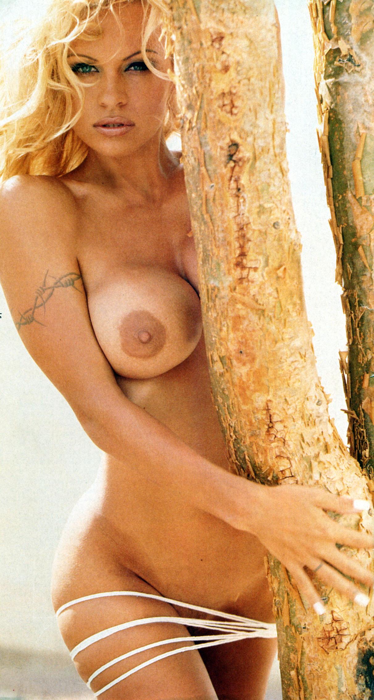 Video xxx pamela anderson